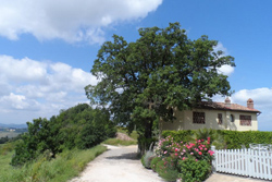 Bed & Breakfast en vakantiehuis Casetta - Toscane, Montespertoli