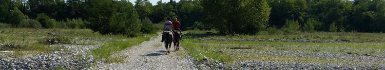 paardrijden_door_meduno