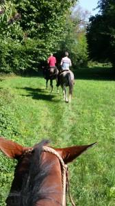 paardrijden_drie