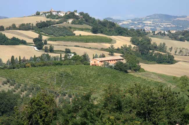Montesoffio agriturismo countryhouse