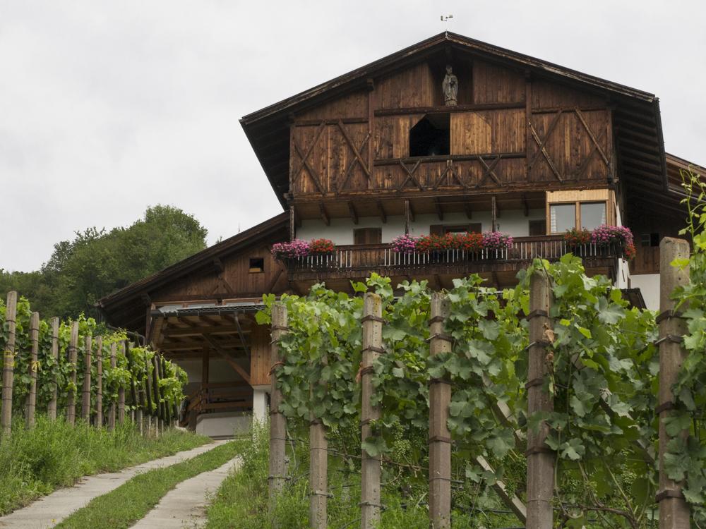 Overnachten in een wijnboerderij