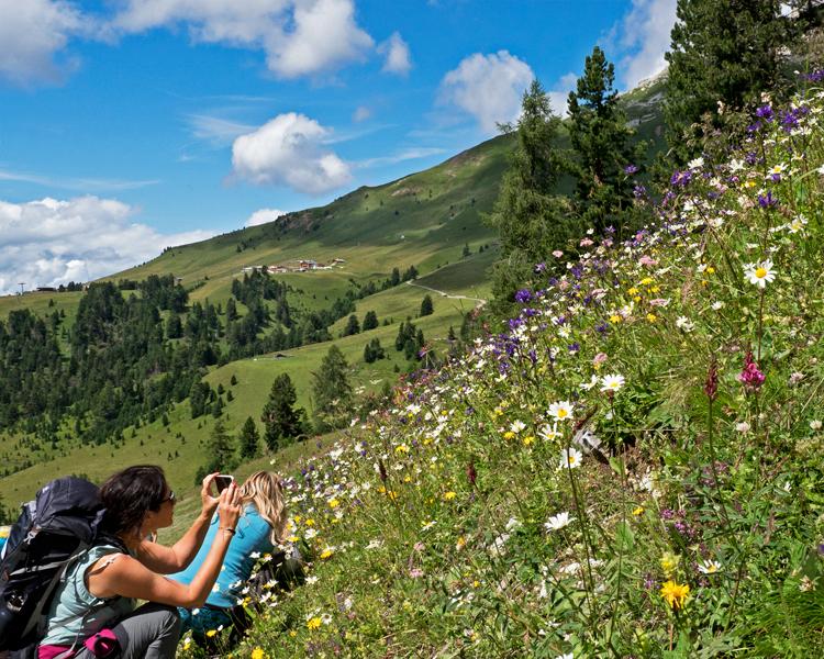 Val di Fiemme - Respirart © Claudia Zanin